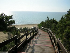 Sabaudia litorale e mare1